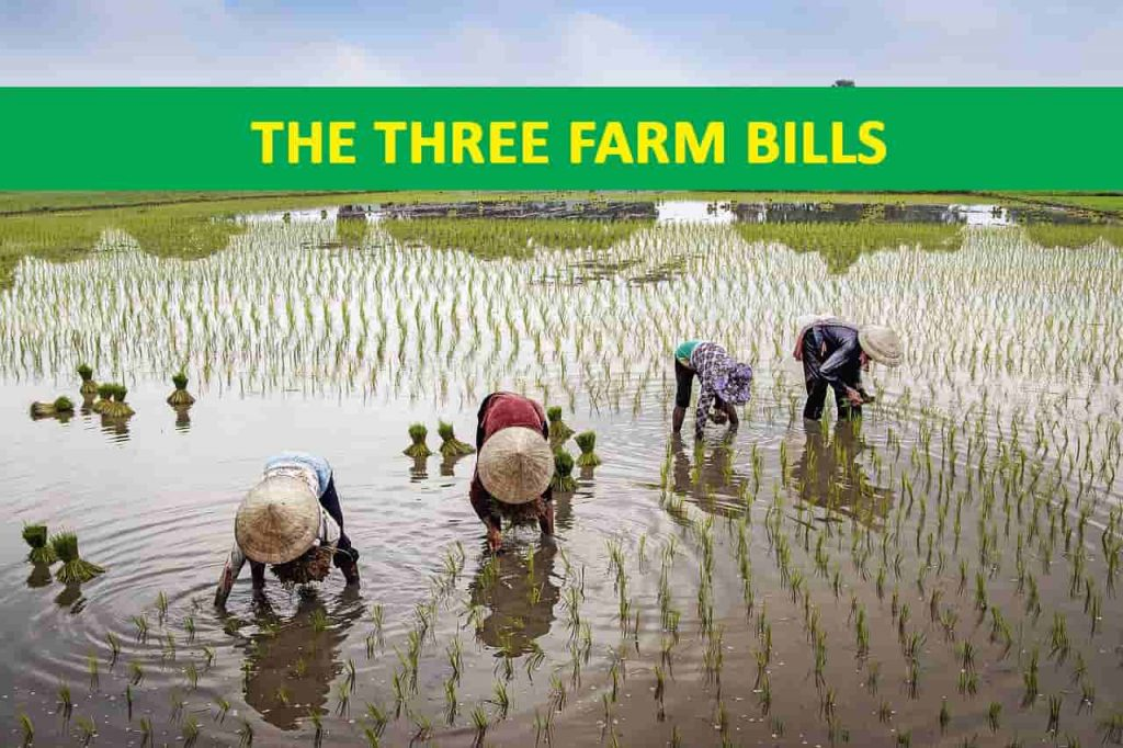 three farm bills